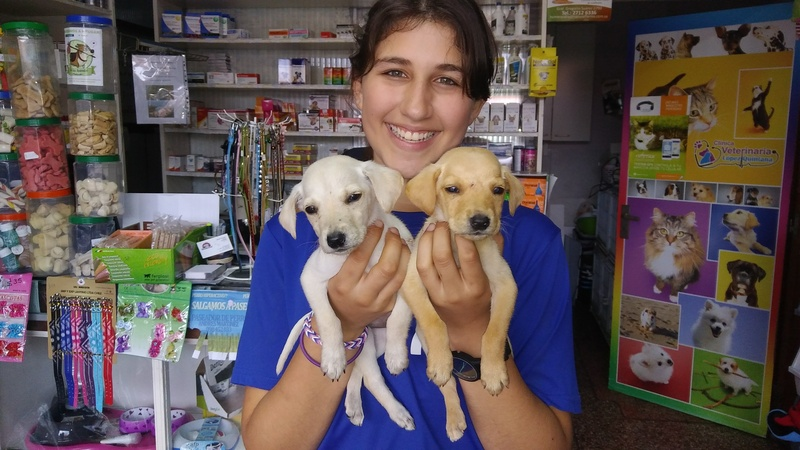 teen girl holds two puppies from the rescue shelter