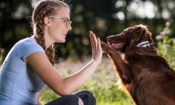 teen and dog high five